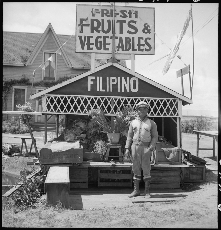 San_Lorenzo,_California._Fruit_and_vegetable_stand_on_highway_operated_by_Filipino._This_year_he_._._._-_NARA_-_537768