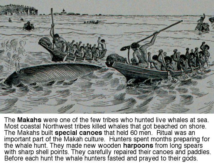 macah_whale_hunt2